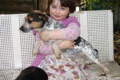 Puppies Blue again